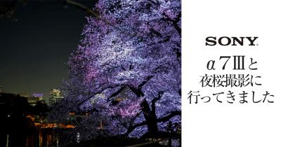 α7Ⅲ 夜桜撮影