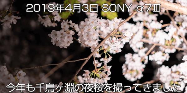 2019年4月3日 千鳥ヶ淵で夜桜撮影 ソニーα7Ⅲと広角レンズ
