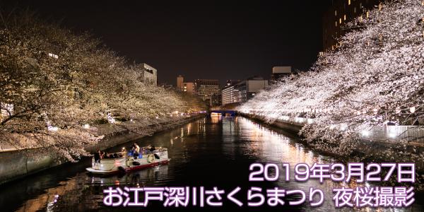 2019年3月27日 お江戸深川さくらまつりの夜桜撮影 α7Ⅲにて