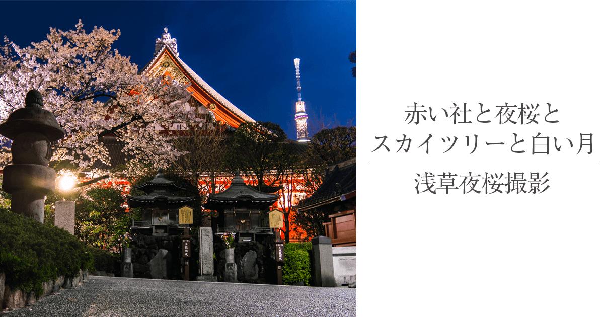 スカイツリーも見える浅草寺の夜桜は朱色の社が良く似合う