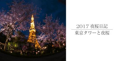 東京タワー夜桜撮影