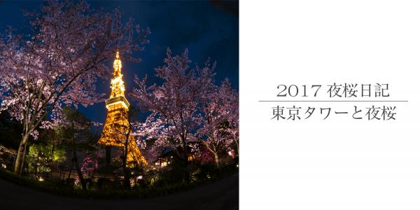 東京タワーのオレンジと桜のピンク。夜空をバックに夜桜撮影